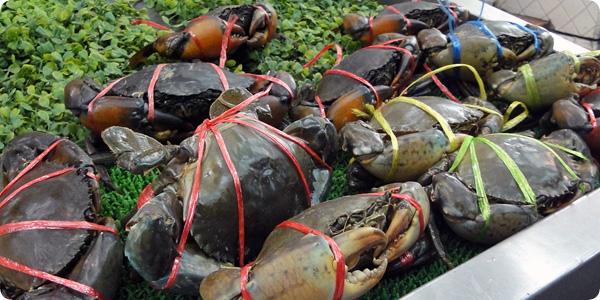 ラオラオの生きている蟹