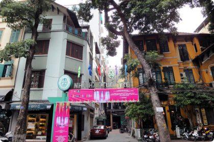 ベトナム青年劇場